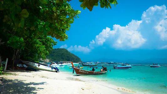 """""""乘风破浪""""的张雨绮,最大的爱好就是在泰国买房?"""
