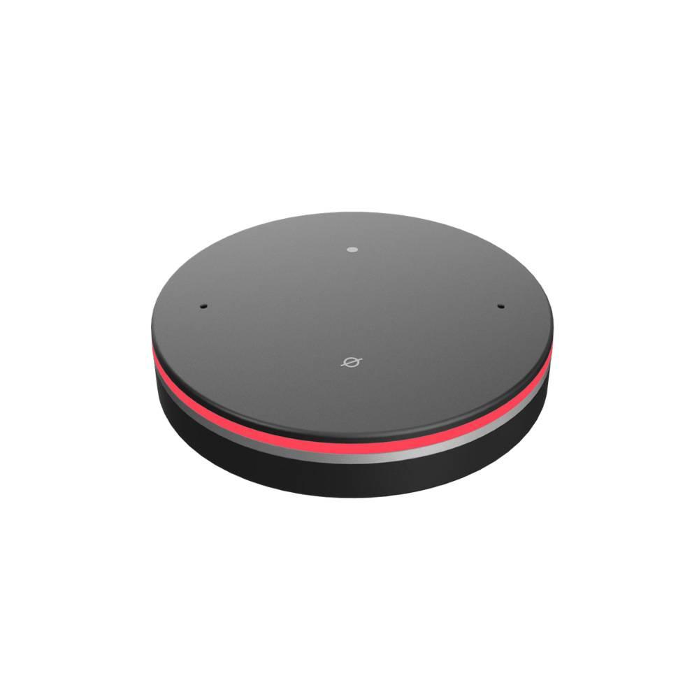 Intelligent voice controller