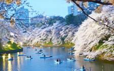 阿联酋迪拜-迪拜南城世博园区MAG5林荫大道