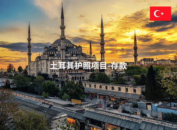 土耳其护照项目-存款-有绿卡